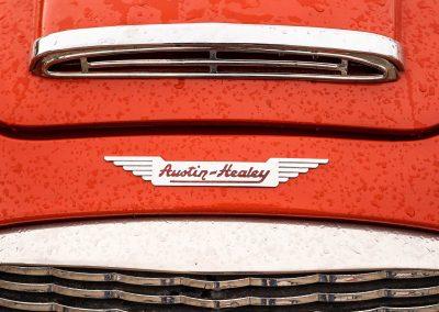 Austin Healey Classic Atelier